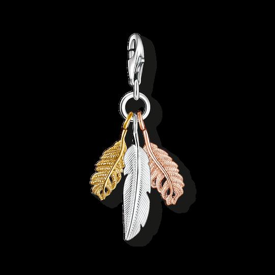 pendentif Charm plume de la collection Charm Club dans la boutique en ligne de THOMAS SABO