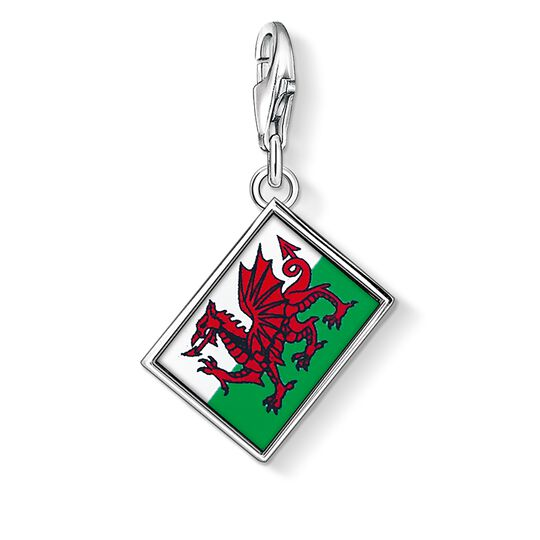 Charm pendant flag Wales from the Charm Club collection in the THOMAS SABO online store