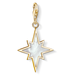 "Charm pendant ""star mother-of-pearl"" from the  collection in the THOMAS SABO online store"