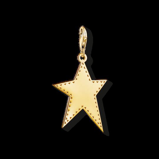 Charm-Anhänger goldener Stern aus der Charm Club Kollektion im Online Shop von THOMAS SABO