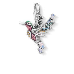 charm pendant hummingbird silver from the Charm Club Collection collection in the THOMAS SABO online store