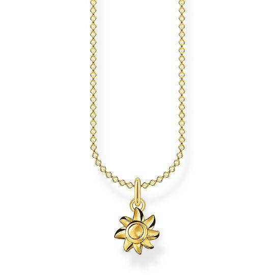 Cadena sol oro de la colección Charming Collection en la tienda online de THOMAS SABO