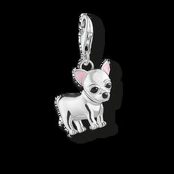 Charm-Anhänger Chihuahua aus der Charm Club Collection Kollektion im Online Shop von THOMAS SABO
