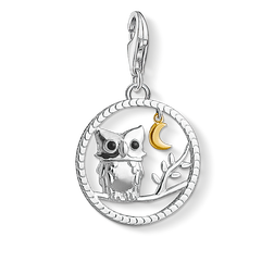 Charm pendant Night owl from the Charm Club Collection collection in the THOMAS SABO online store