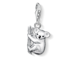 Charm pendant koala from the Charm Club Collection collection in the THOMAS SABO online store
