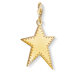 Charm pendant Golden star from the Charm Club Collection collection in the THOMAS SABO online store
