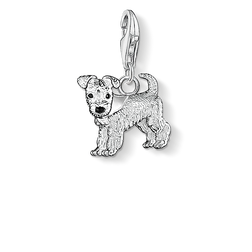 Charm pendant dog from the Charm Club Collection collection in the THOMAS SABO online store