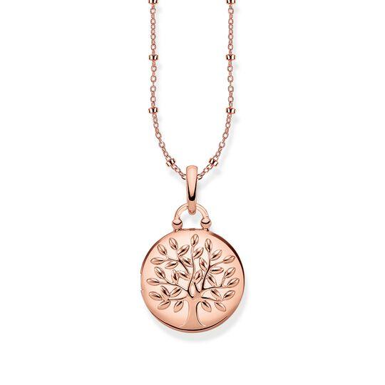 chaîne Médaillon Tree of Love rose rond de la collection Glam & Soul dans la boutique en ligne de THOMAS SABO