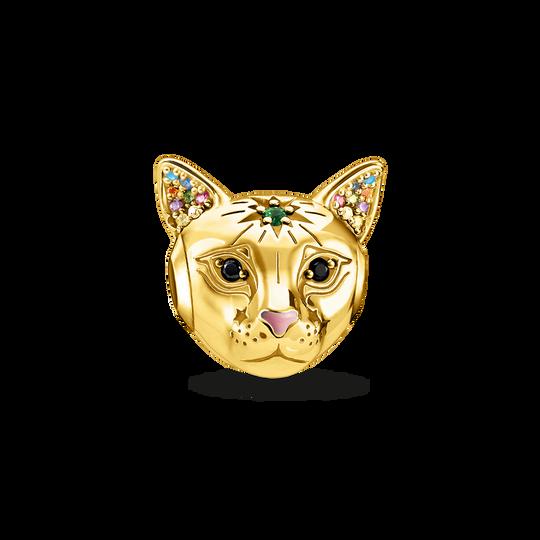 Bead Katze gold aus der Karma Beads Kollektion im Online Shop von THOMAS SABO