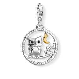 Charm pendant Night owl from the  collection in the THOMAS SABO online store