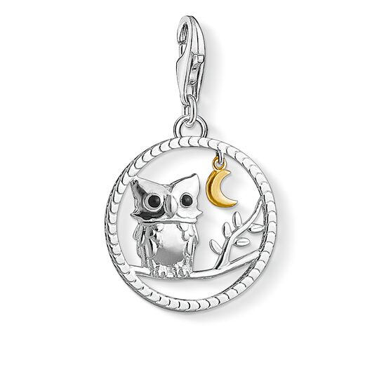 Charm pendant Night owl from the Charm Club collection in the THOMAS SABO online store