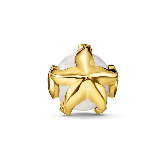"Bead ""starfish"" from the Glam & Soul collection in the THOMAS SABO online store"