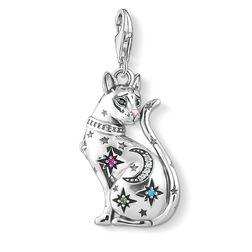 colgante Charm gato constelación plata de la colección  en la tienda online de THOMAS SABO