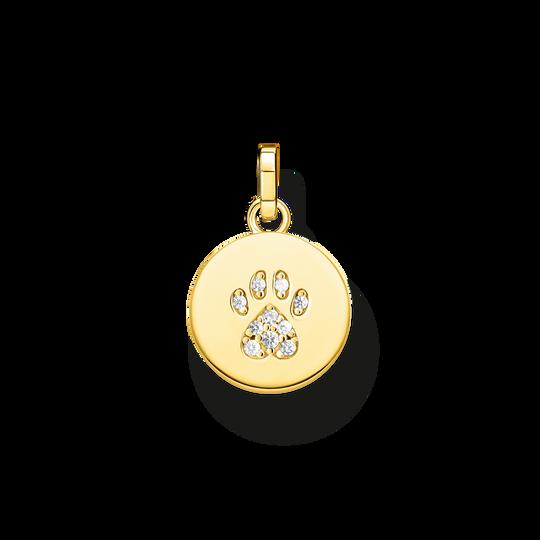 Anhänger Coin Pfote Katze gold aus der Glam & Soul Kollektion im Online Shop von THOMAS SABO