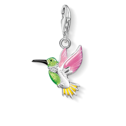 Charm pendant colourful hummingbird from the Charm Club Collection collection in the THOMAS SABO online store