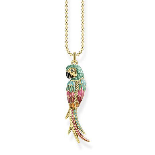 Chaîne perroquet or de la collection  dans la boutique en ligne de THOMAS SABO