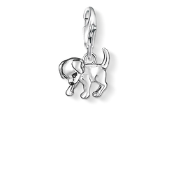 Charm pendant puppy from the Charm Club Collection collection in the THOMAS SABO online store
