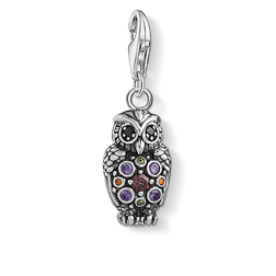 Charm pendant Sparkling owl  from the  collection in the THOMAS SABO online store