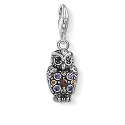 Charm pendant Sparkling owl from the Charm Club Collection collection in the THOMAS SABO online store