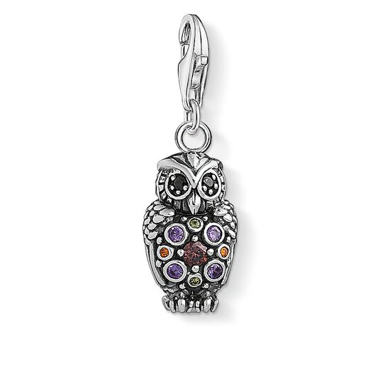 ciondolo Charm Gufo scintillante from the  collection in the THOMAS SABO online store