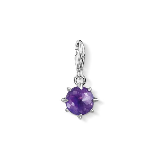 Charm pendant birth stone February from the Charm Club collection in the THOMAS SABO online store