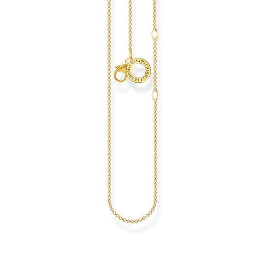 Charm-Kette gold aus der Charm Club Kollektion im Online Shop von THOMAS SABO