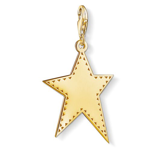 Charm pendant Golden star from the Charm Club collection in the THOMAS SABO online store