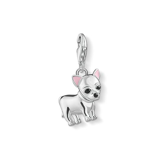 Charm pendant Chihuahua from the Charm Club collection in the THOMAS SABO online store