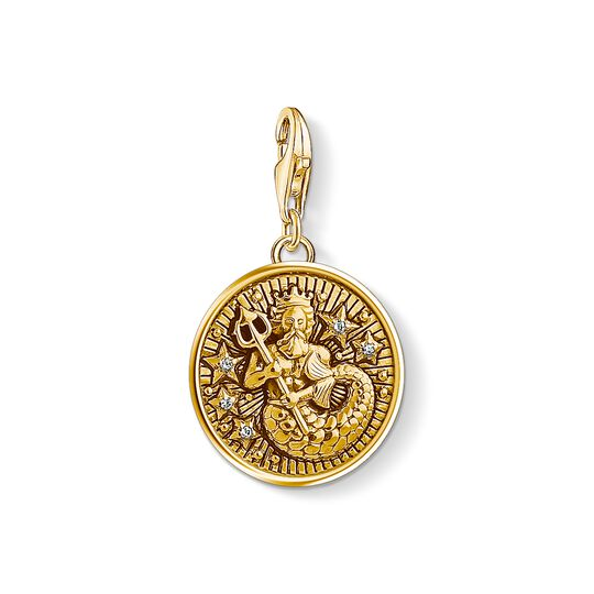 Charm pendant zodiac sign Aquarius from the Charm Club collection in the THOMAS SABO online store