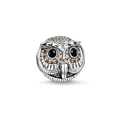 "Bead ""gufo"" from the Karma Beads collection in the THOMAS SABO online store"