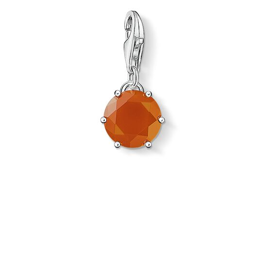 "ciondolo Charm ""pietra nascita gennaio"" from the  collection in the THOMAS SABO online store"